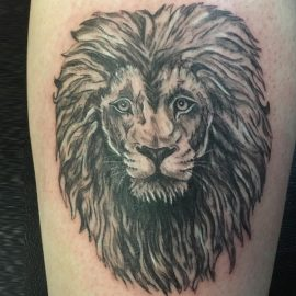 african lion tattoo